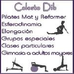 Profe de Pilates y Streching en Vicente Lopez, Pcia. Buenos Aires (GBA Norte)
